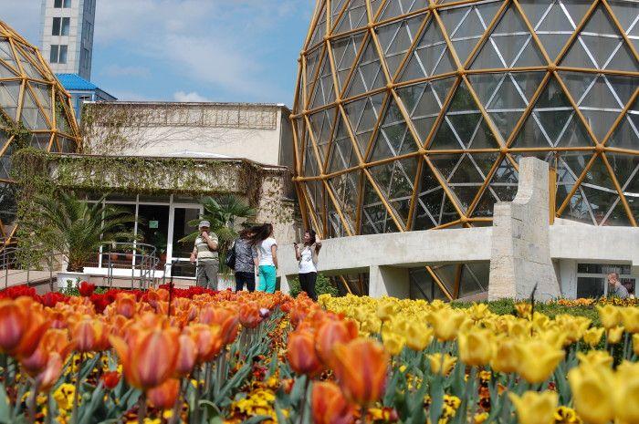 30.000 de turiști vizitează anual Grădina Botanică Jibou