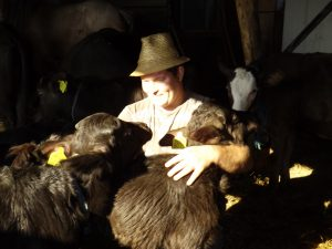 Ionuț iubește animalele