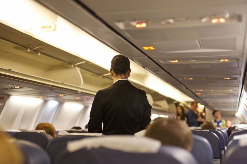 insotitoare de ybor stewardesa