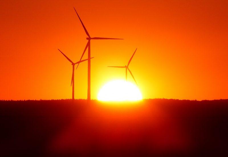 Guvernul a luat măsuri pentru sprijinirea producției de energie regenerabilă, iar acestea se vor vedea în facturi
