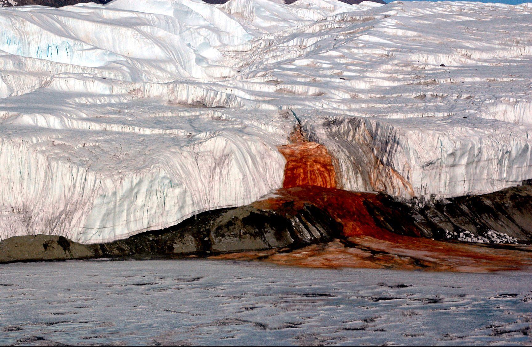 """Misterul """"cascadei însângerate"""" din Antarctica, deslușit de oamenii de știință – VIDEO"""